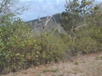 Residential Land for sale Bequia ( Spring)