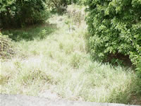 Residential Land for sale at Beachmont - Kingstown